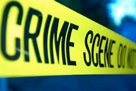 Image result for crime online daily